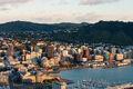 Wellington at dawn.jpg