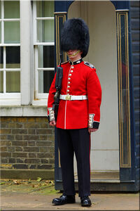 Grenadier Guards Sentry