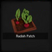 Radish Patch