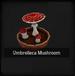 Umbrelleca Mushroom