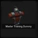 Master Training Dummy