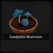 Candystick Mushroom
