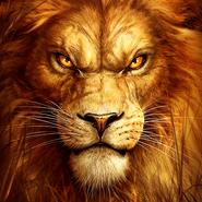 Predator Lion