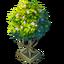 Reward tree