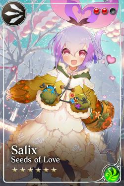 Salix (Valentine's)+1
