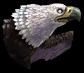 Zephyr Bird