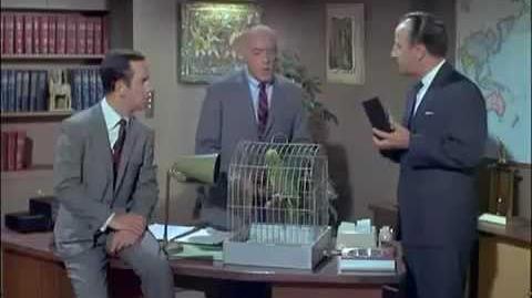 Agente 86 2x13 - O Papagaio Espião (Dublado)
