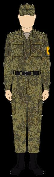 Полевой костюм РИ - Степь (2)