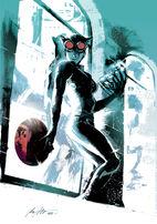 2498497-catwoman by rafaelalbuquerqueart d4hjwrs