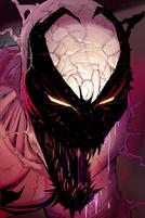 Wolf Spider Symbiot