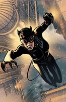 180632-75981-catwoman