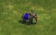 War Elephant aoe 1