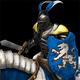 Paladin icono-DE