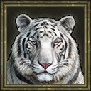 WhiteTiger icon