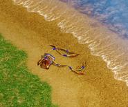 Krakenbits
