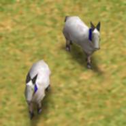 Goats AoM