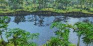 RM AoE3 Amazonia 1
