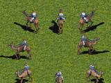 Camel Rider (Age of Empires)