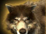 Ornlu the Wolf