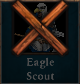 Eaglescoutunavailable