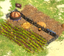 Farm (Age of Empires III)