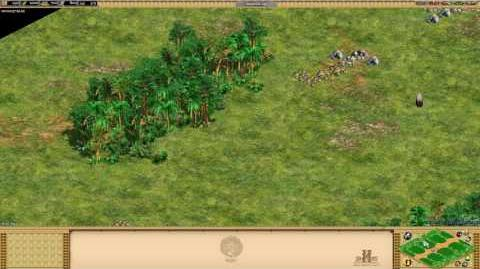 Age of Empires II- Rise Of The Rajas - -18 Jungle Lanes - Special Map