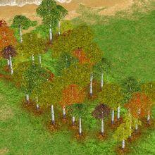 Gaia Tree