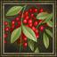Cherry Orchard icon