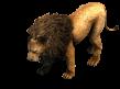 Lion prev aoe2de