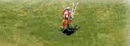 Champion wields two swords