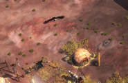 Condor AOE III
