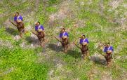 日本人 - 單位03-1.和弓兵
