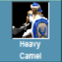 Heavycamelavailable