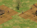 Farm (Age of Empires II)