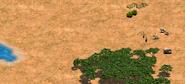 Hornofafricawildlife
