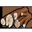 Aoe2de wood