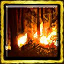 Tupi Forest Burning