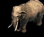 Elephant prev aoe2de