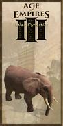 Elephant history portrait