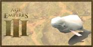 Beluga Whale history portrait