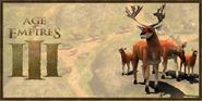 Deer history portrait