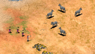 Zebrahunt