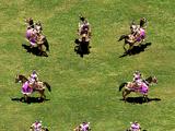 Cavalry Archer (Age of Empires II)