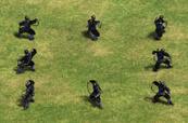 Aoe2 ninja