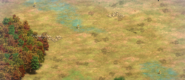 Journey terrain4 aoe2de