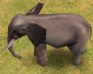 ElephantAOM
