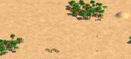 Westafricasahara