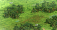 Bogland terrain aoe2DE