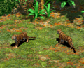AOE2Tigers.png