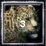 Aztec Home City 1 (3 Jaguars)